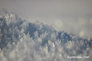 The Snowy Waves